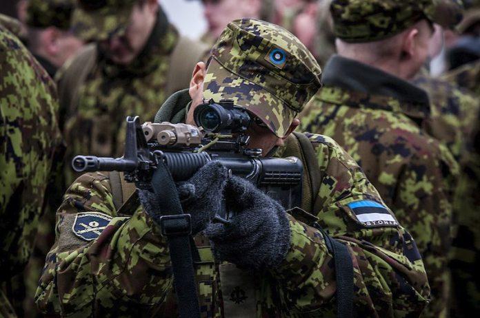 силы обороны Эстонии, солдат, оружие, кайтселийт