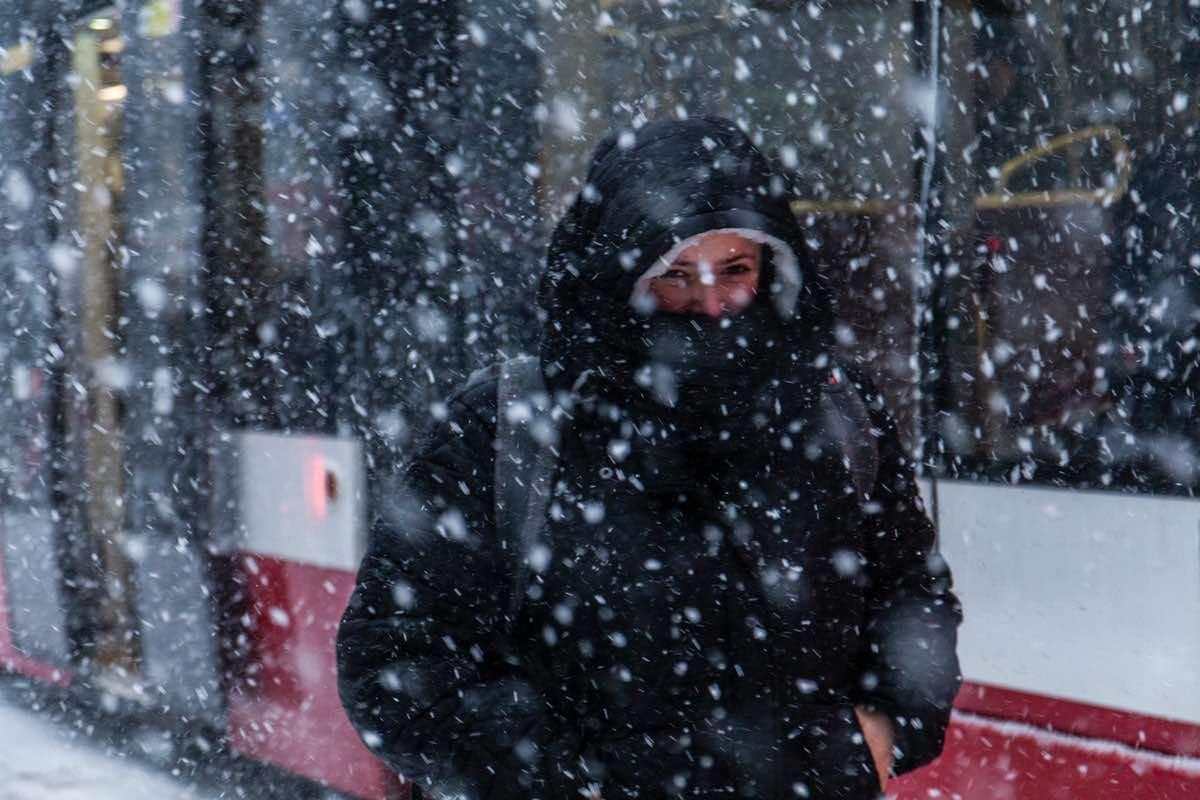 погода, снег, мокрый, снегопад, метель, зима, человек, холод