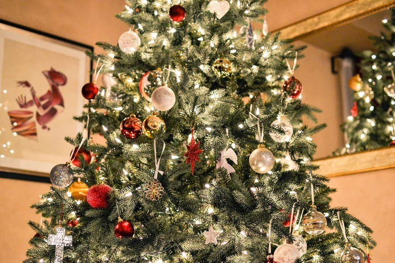 Рождество, новый год, елка